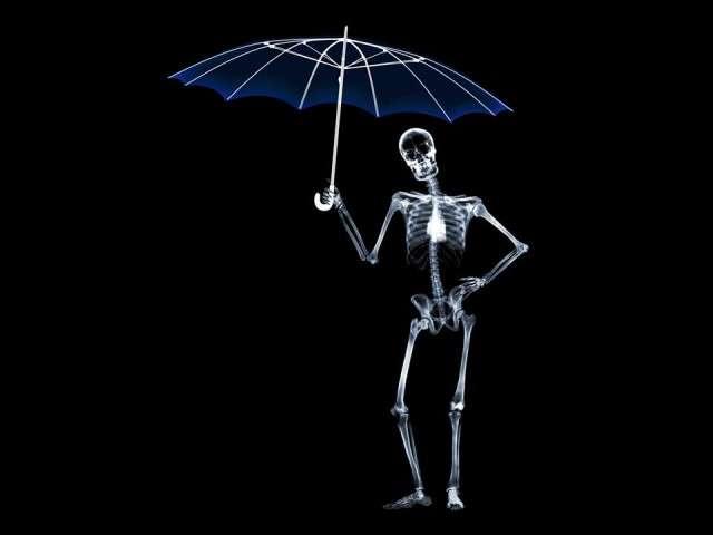 X-Ray xr38.jpg